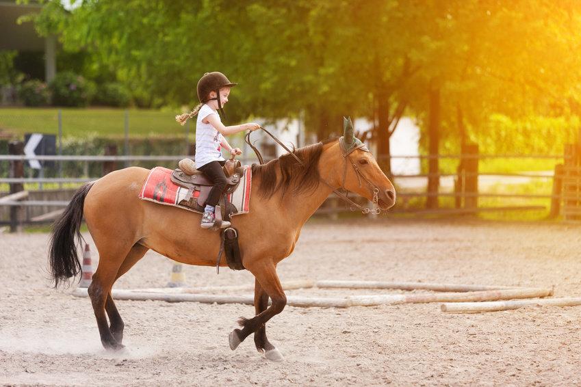 atlara-kac-yasindan-itibaren-binilmeli