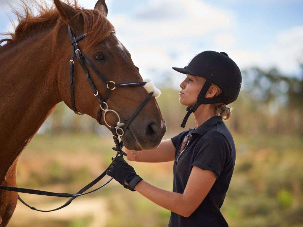At Binmenin Bana Ne Faydası Olur?